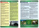 Boletim Informativo 2ª Edição Pag. 2 e 3